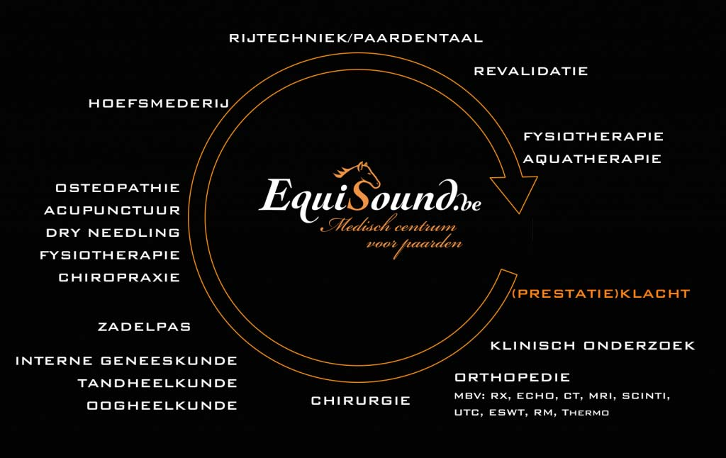 EquiSound multidisciplinair team